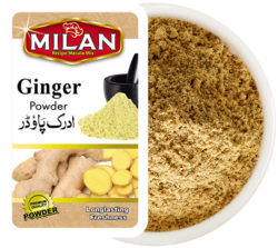 ginger-powder-product